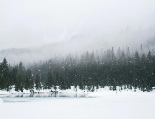 Løb i frost og kulde – Derfor er det lidt mere udfordrende at løbe om vinteren – Kender du det med at løbe på frostkolde stier- en snak om småskader og stress