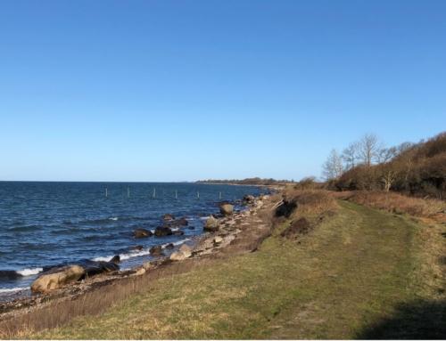 De bedste kyststrækninger på Sjælland del 3# – Et sted langt ude i horisonten ligger spidsen af Knudshoved Odde.